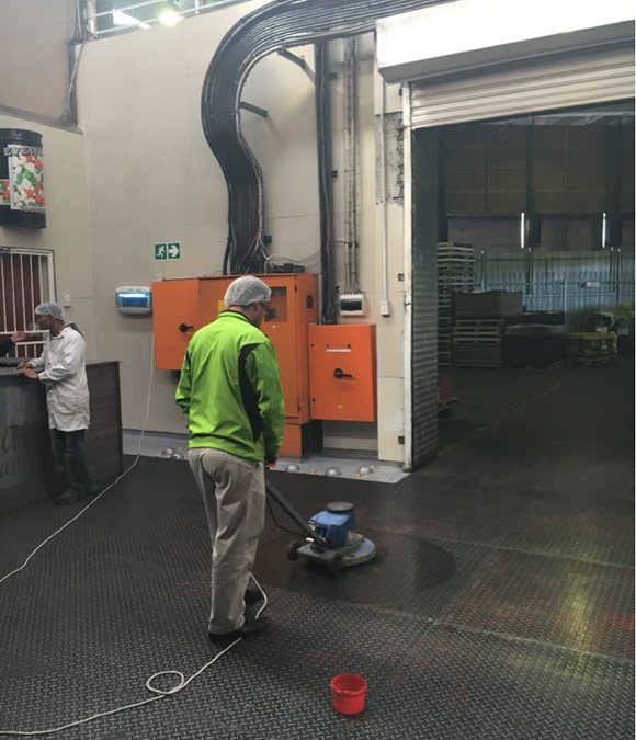 Numatic HFM1515 being used in a Food Processing Plant